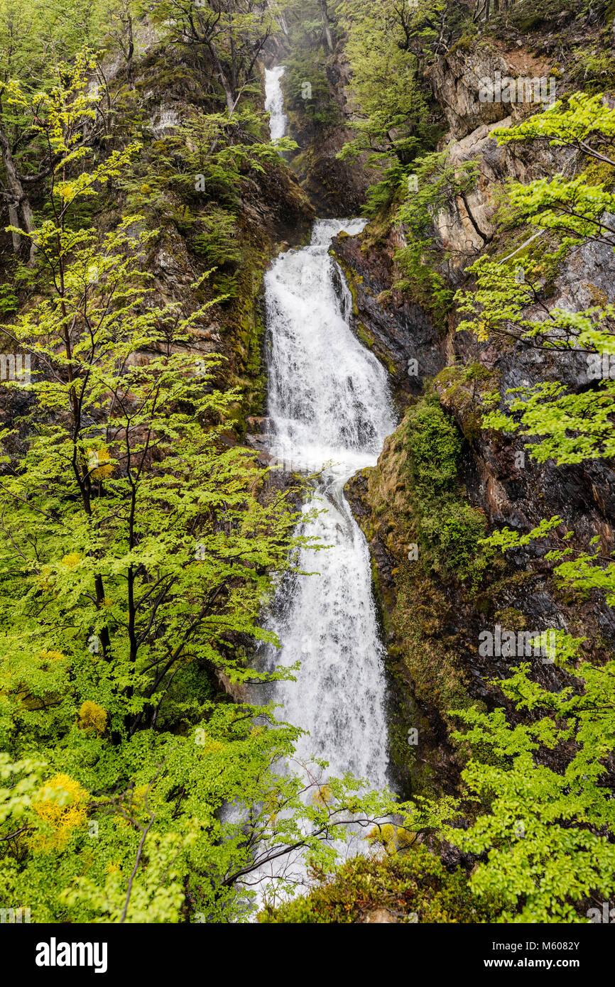 Sendero a la Cascada Velo de la Novia; la ruta de acceso a la cascada Velo de la Novia; Ushuaia, Argentina Imagen De Stock