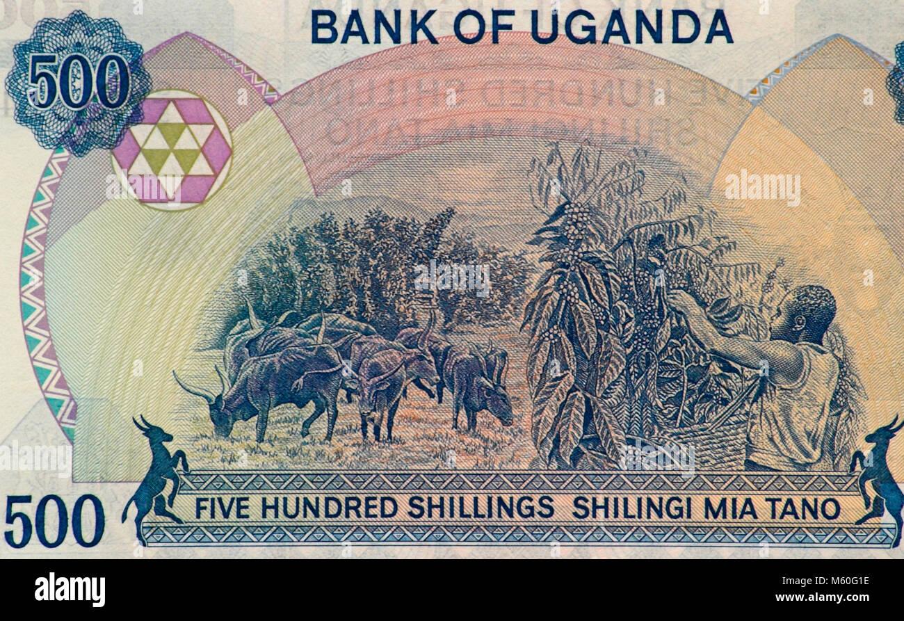 Uganda Quinientos Shilling Bank Note Imagen De Stock