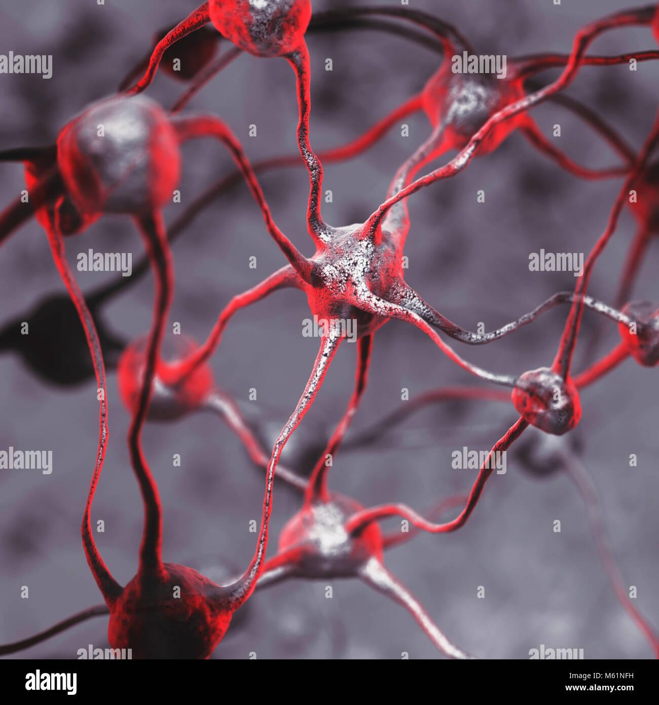 Ilustración 3D de una red neuronal biológica del cerebro humano, las neuronas interconectadas, las células Imagen De Stock