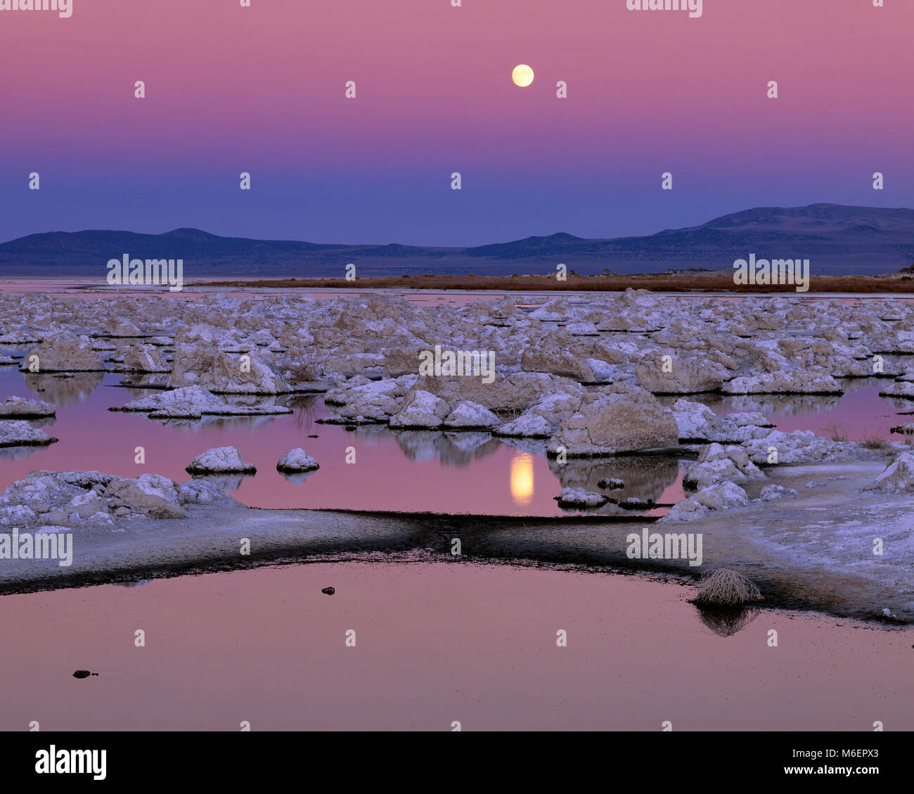 Luna, el Lago Mono, Mono Basin National Forest, área escénica nacional Inyo Forest, California Imagen De Stock