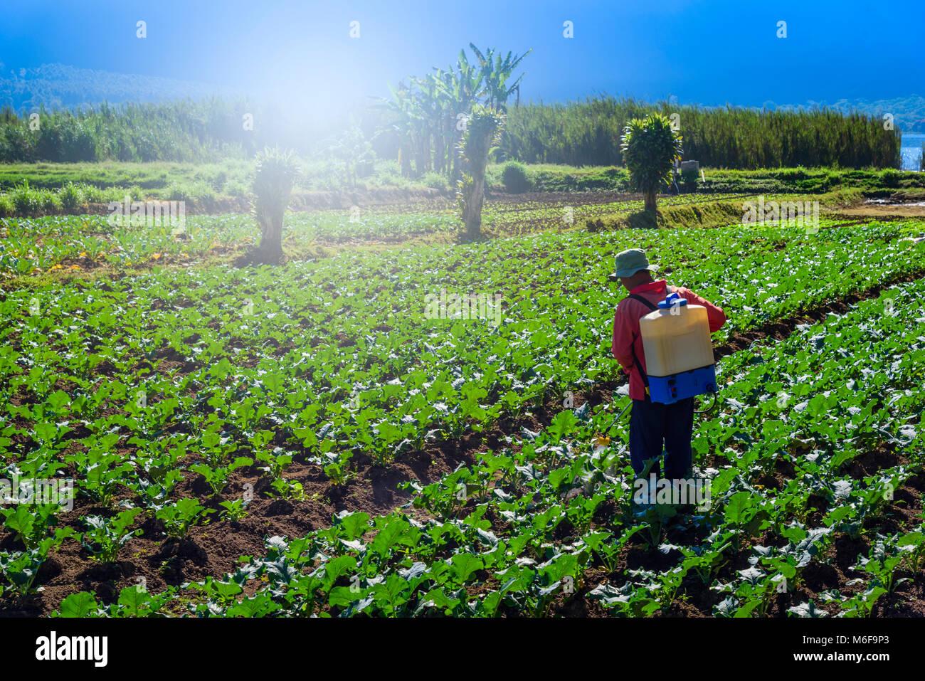 Resultado de imagen de agricultor pulverizando