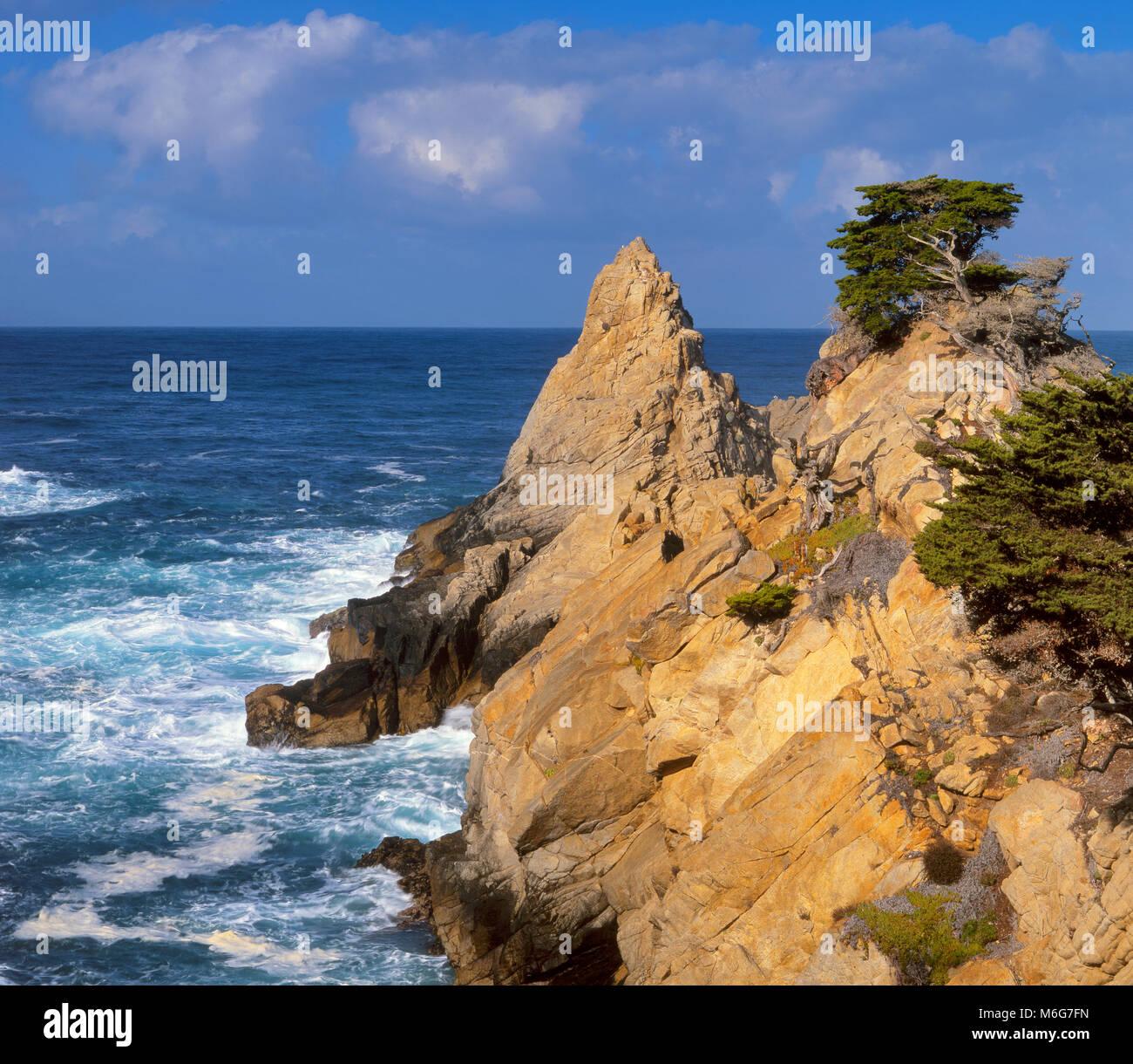 El Pinnacle, Point Lobos State Reserve, Big Sur, el Condado de Monterey, California Imagen De Stock