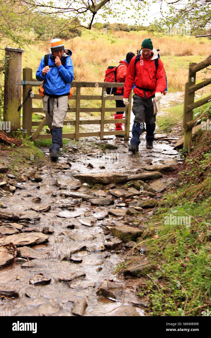 Grupo de caminantes se acercan en Wye de heno en el Offa's Dyke sendero de larga distancia después de caminar por la via de Brecon Beacons Bluff en heno húmedo Foto de stock