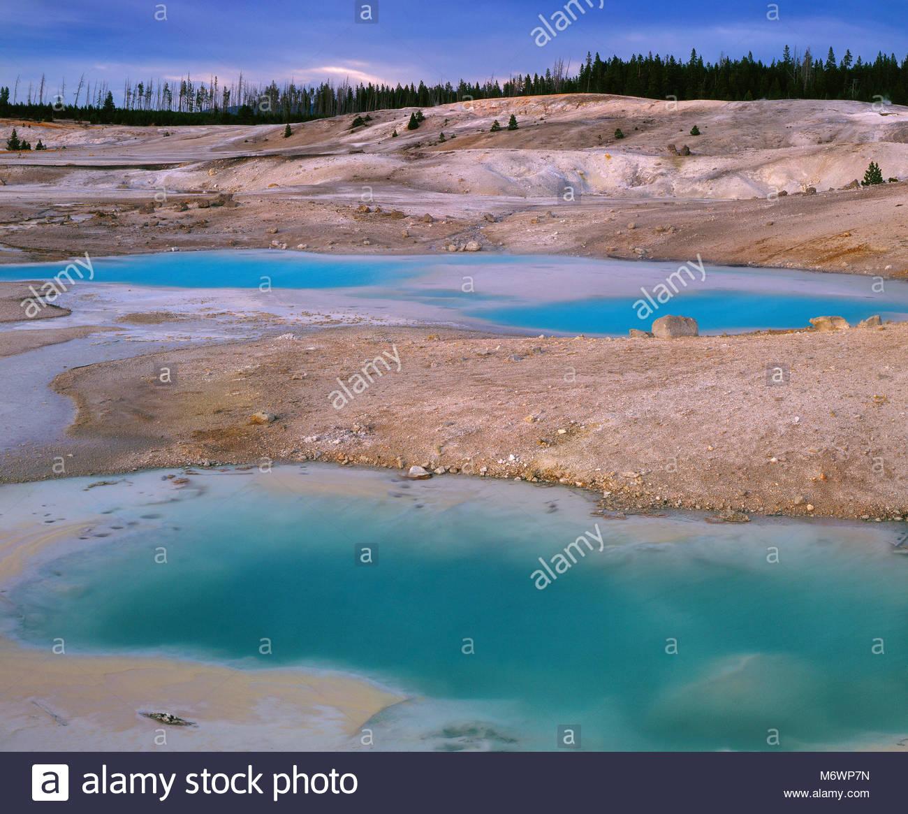 Norris Géiser Cuenca, Parque Nacional Yellowstone, Wyoming Foto de stock