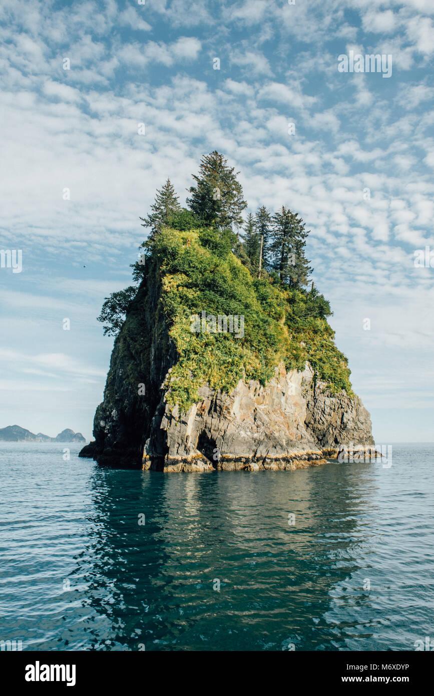 Avistamiento de Ballenas en la salida glaciar Imagen De Stock