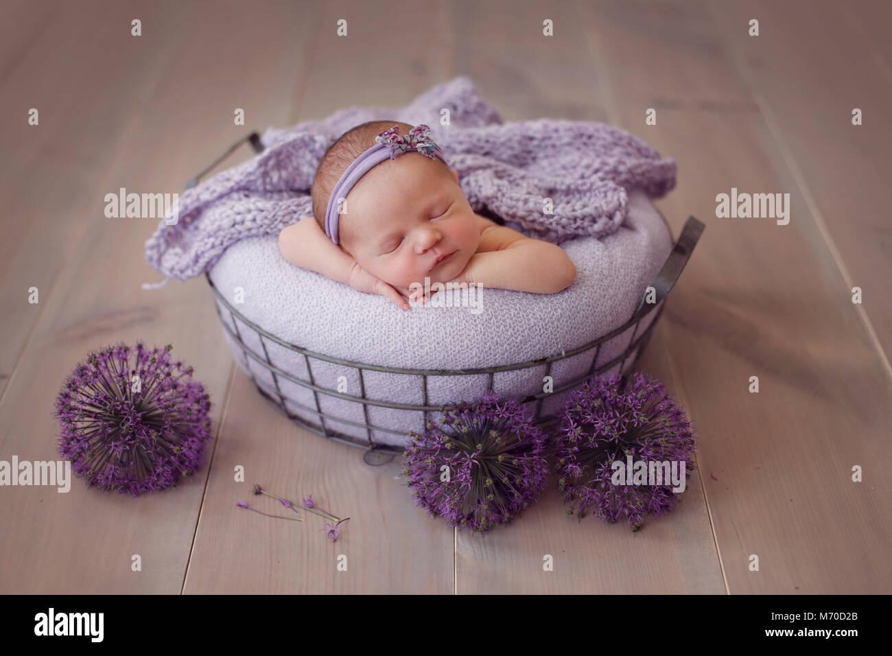 Canasta De Recien Nacido.Bebe Recien Nacido Duerme En Una Canasta Sobre Un Fondo De