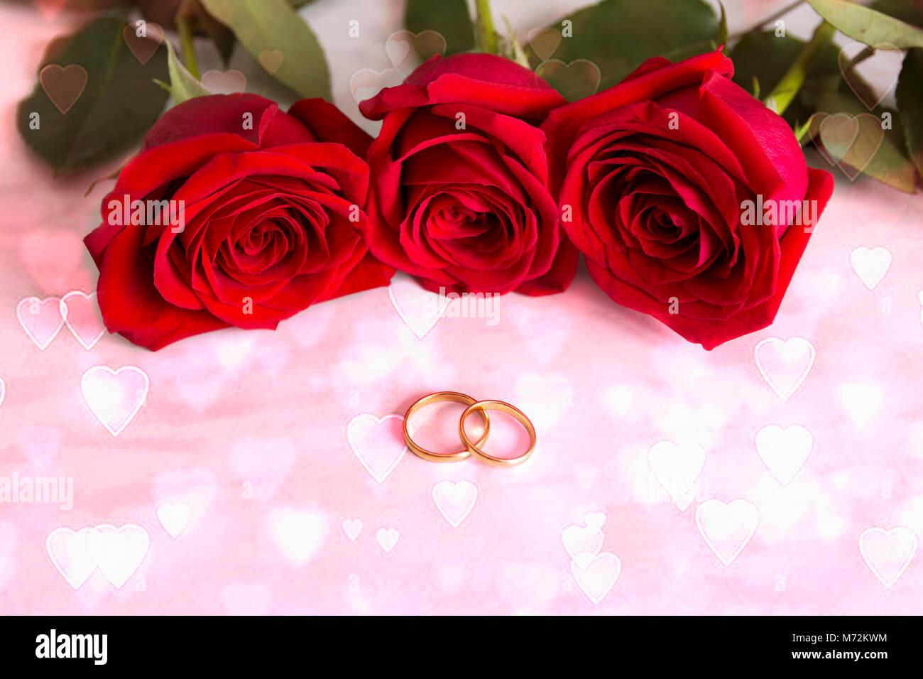 e2c4f2a175be Dos anillos de boda de oro y tres rosas rojas. Bokeh precioso en forma de  corazón. Tarjeta de invitación de la boda