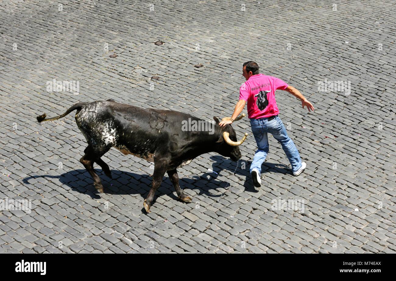 Corrida de toros (tourada à corda) en Angra do Heroísmo. Terceira 48659fa692d