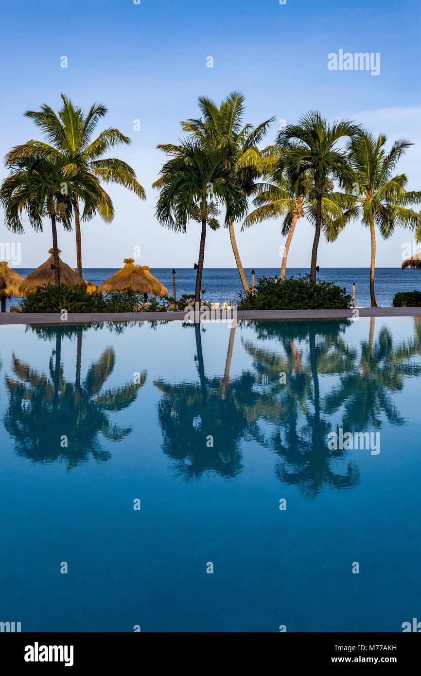 Reflexiones de palmeras en la piscina del hotel Sugar Beach, Santa Lucía, Islas de Barlovento, Antillas, Caribe, América Central Foto de stock