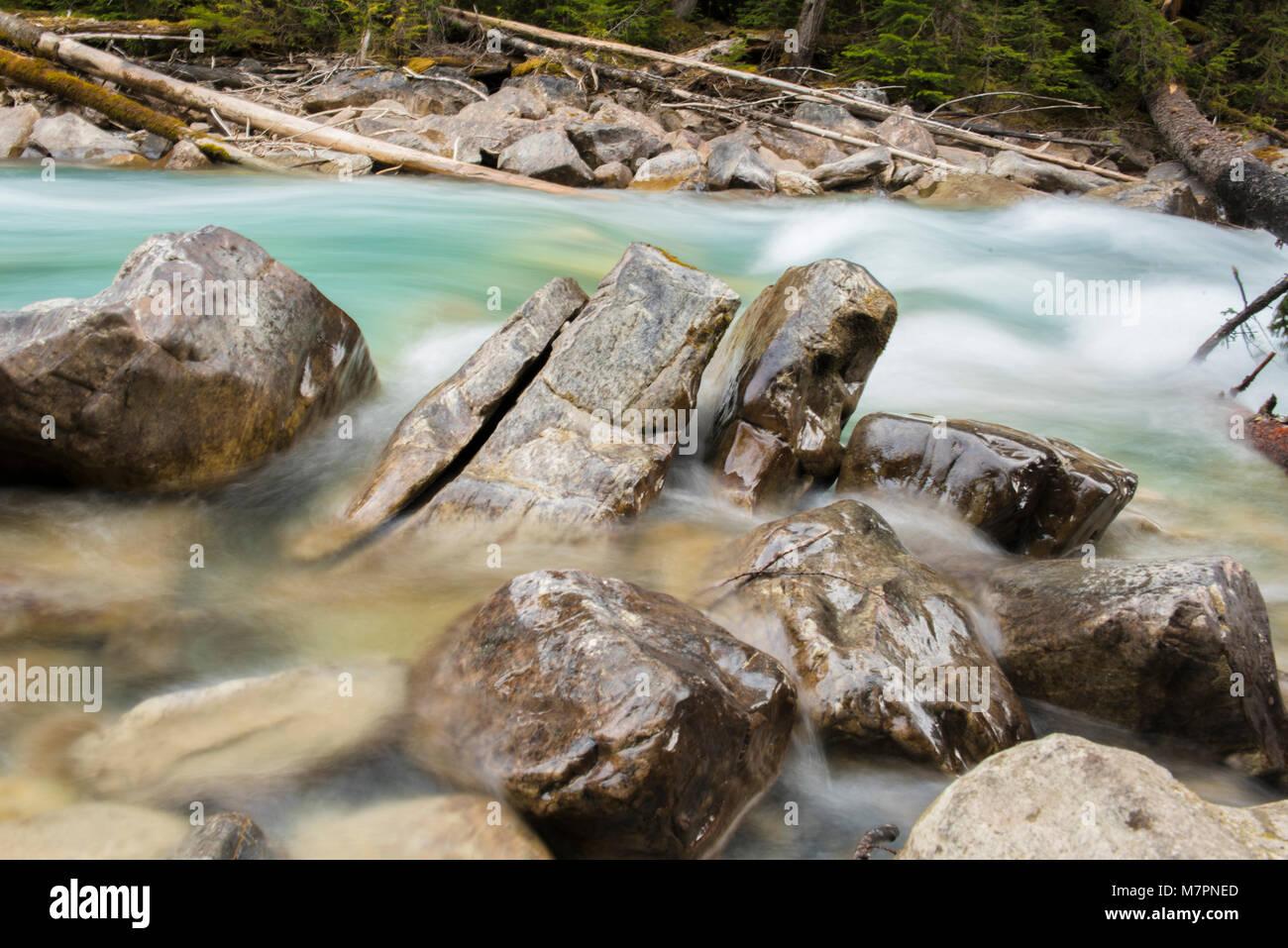 En el cañón del río Coquihalla Provincial Park, cerca de esperanza, British Columbia Foto de stock
