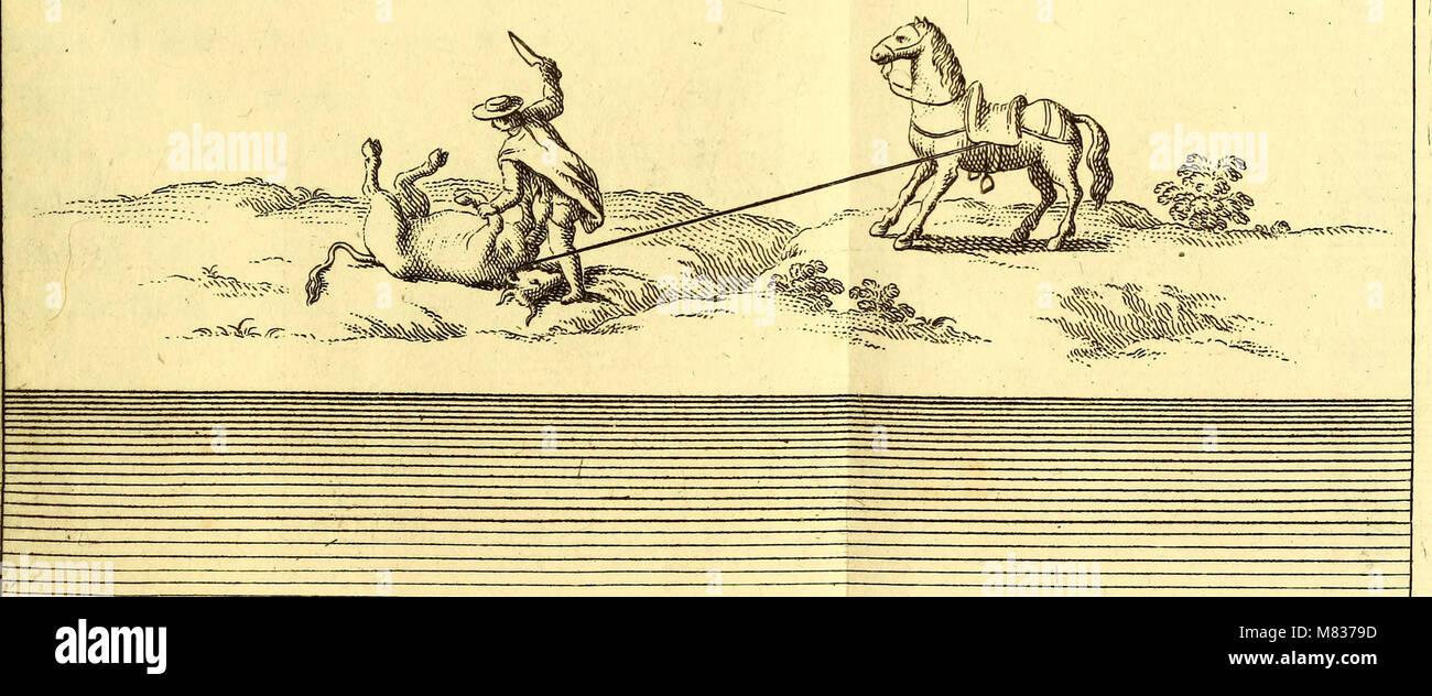 Compendio della storia geografica, naturale e civile del regno del Chile (1776) (20049969223) Foto de stock