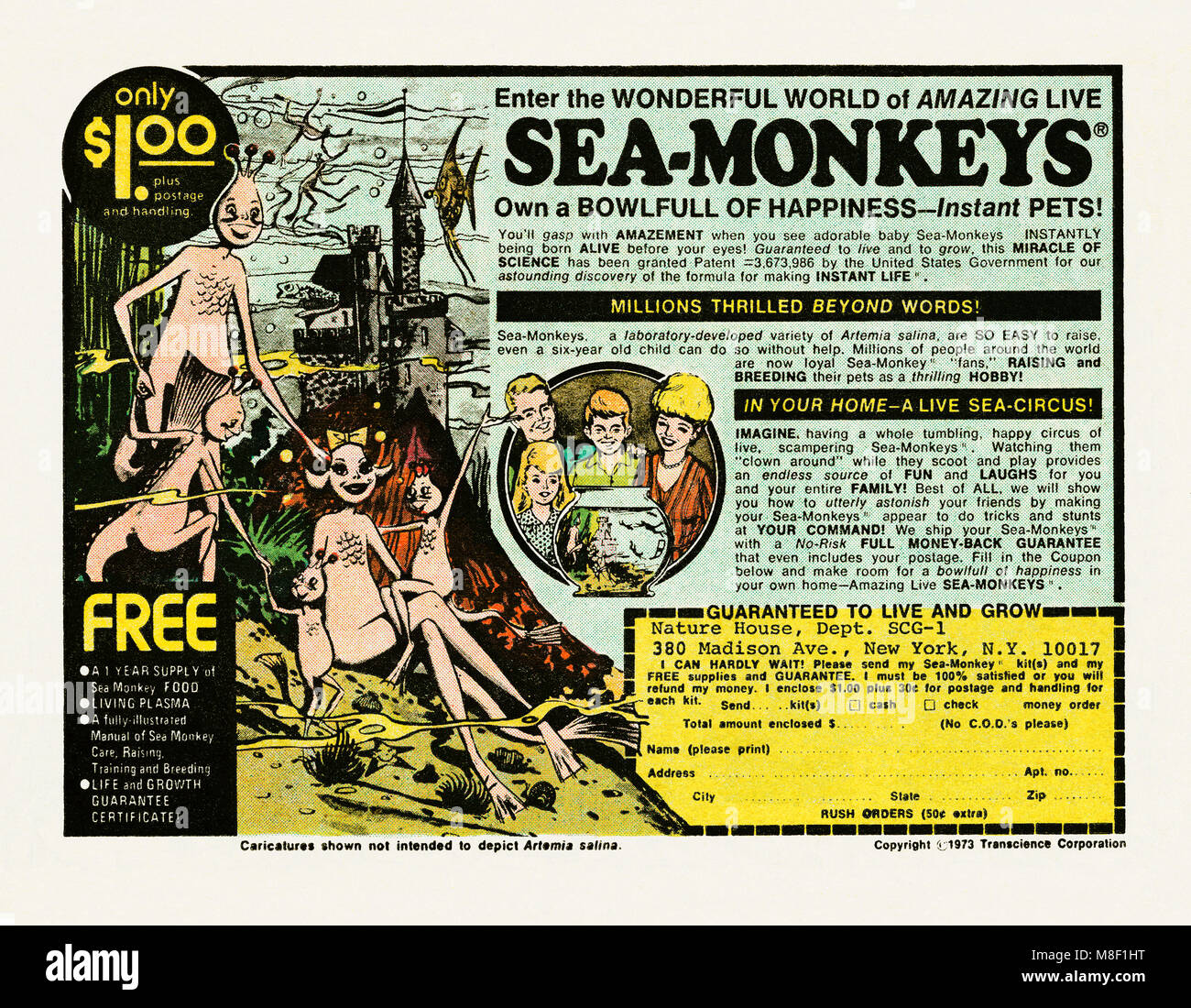 Pet Monkey Imágenes De Stock & Pet Monkey Fotos De Stock - Alamy
