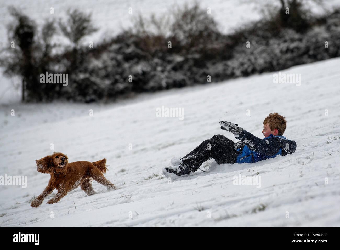 Un grupo de niños disfrutan de las condiciones trineo sobre una colina en el valle de Santa Catalina, justo a las afueras de Bath en Somerset después de las fuertes nevadas. Foto de stock