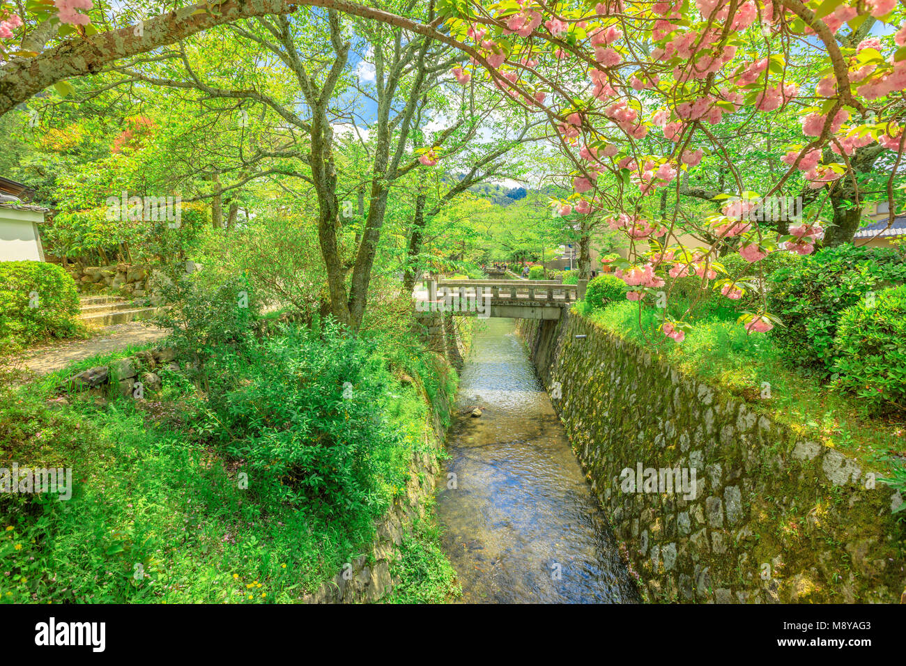 El paisaje del filósofo a pie también llamado Tetsugaku-no-michi, un sendero peatonal que sigue una cereza-canal arbolada en Kioto, Distrito Higashiyama, Japón. Foto de stock