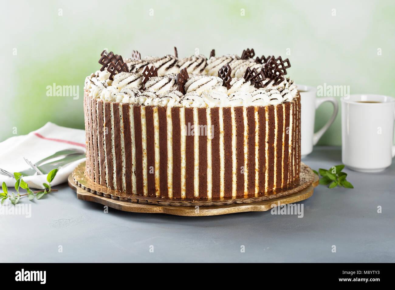 Tiramisu pastel de chocolate decoración Imagen De Stock
