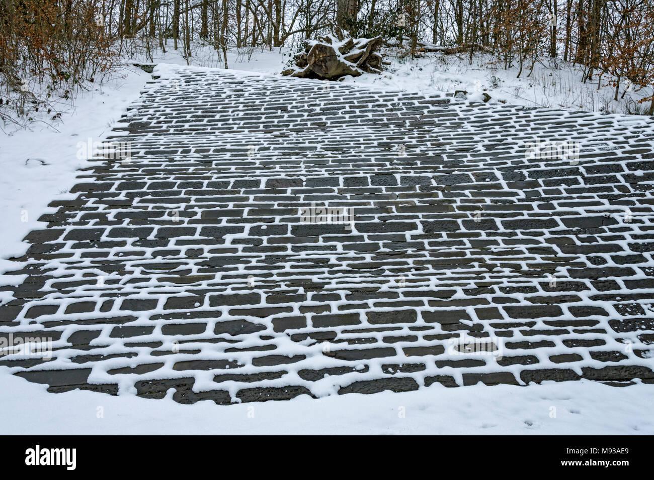 El derretimiento de la nieve sacando el apuntando sobre un terraplén de piedra en el rincón de Margarita, Failsworth Country Park, Manchester, Inglaterra, Reino Unido. Imagen De Stock
