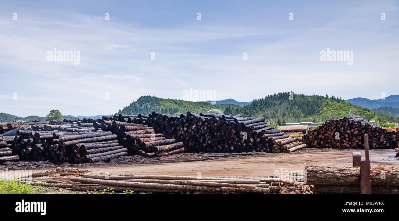 Troncos apilados listos para usar en C&D Empresa maderera molino de madera Riddle, Oregón Foto de stock