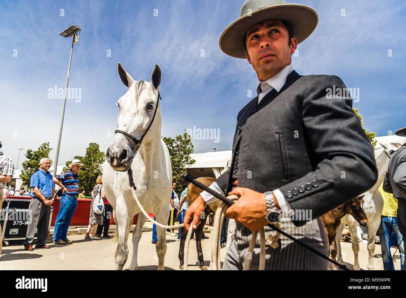 Córdoba, Andalucía, España : jinete andaluz y thoroughbred mare en la Feria del Caballo de Córdoba. Foto de stock