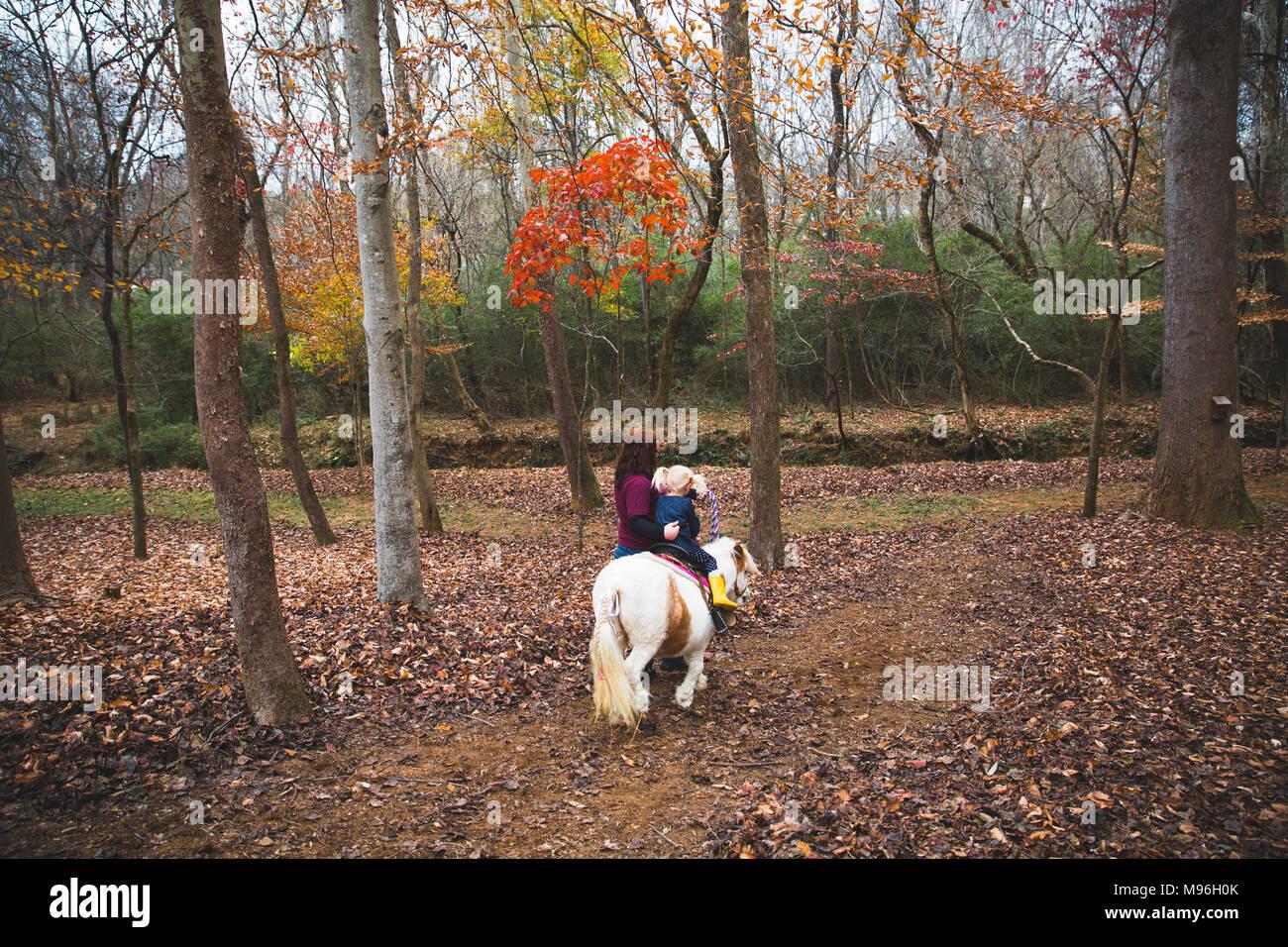 Chica siendo guiados a caballo a través de bosques Imagen De Stock