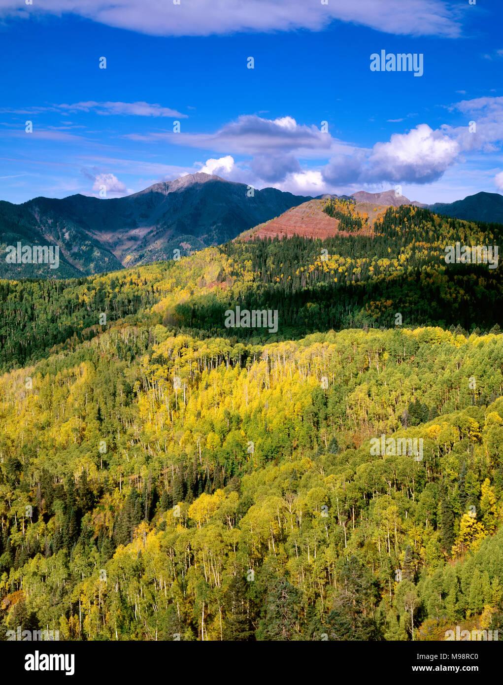 Montaña de Plata, el Bosque Nacional de San Juan, Colorado Imagen De Stock
