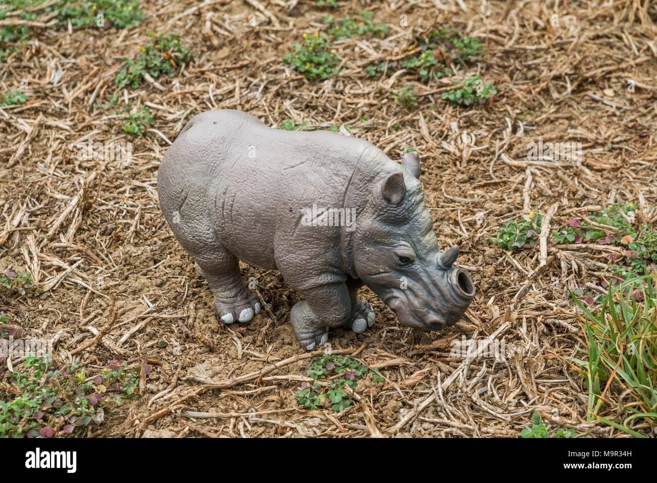 White Rhino juguete sin un cuerno en una pastura. Imagen De Stock