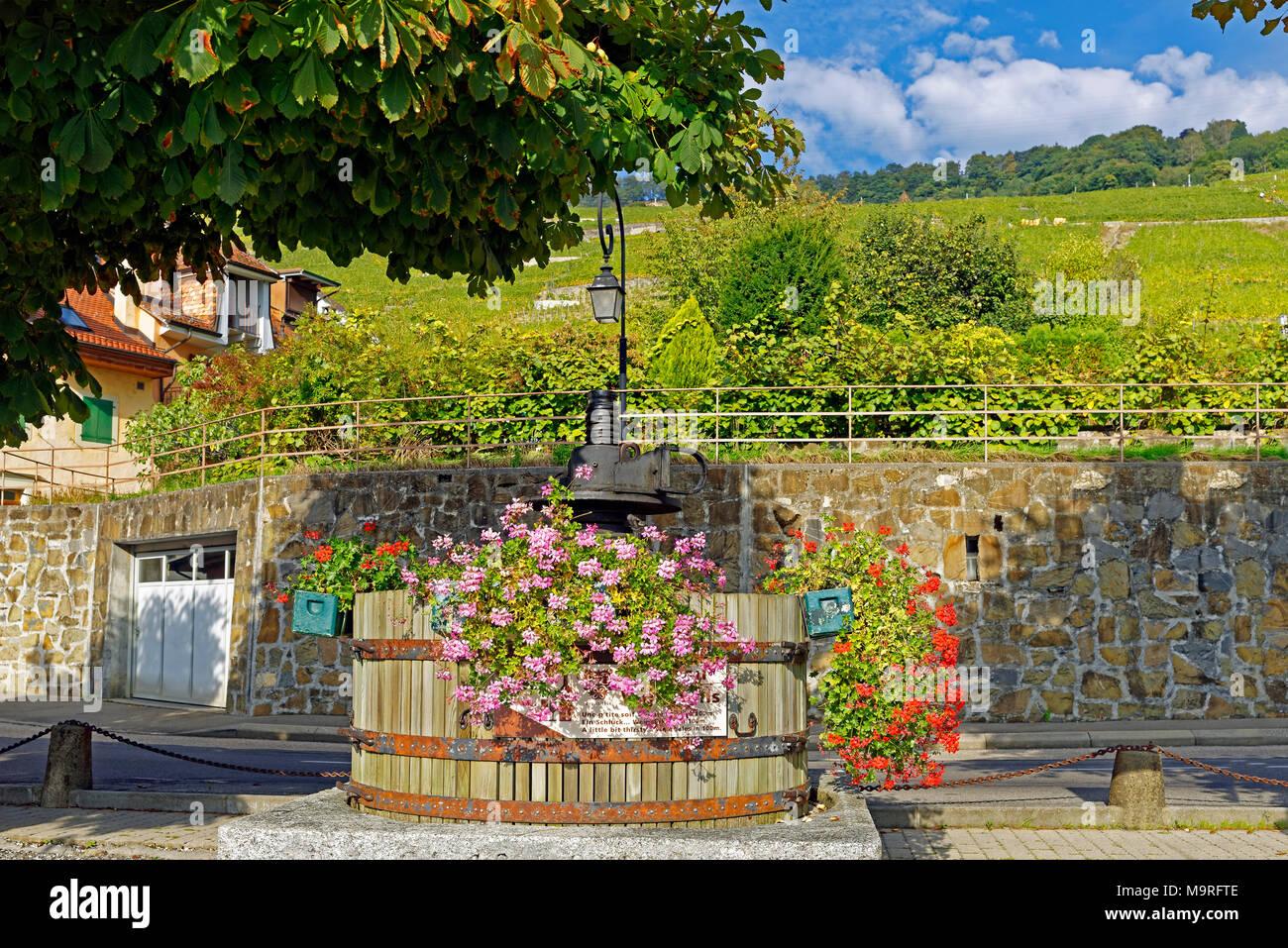 Europa Suiza Vaud Vaud Bourg En Lavaux Route De La