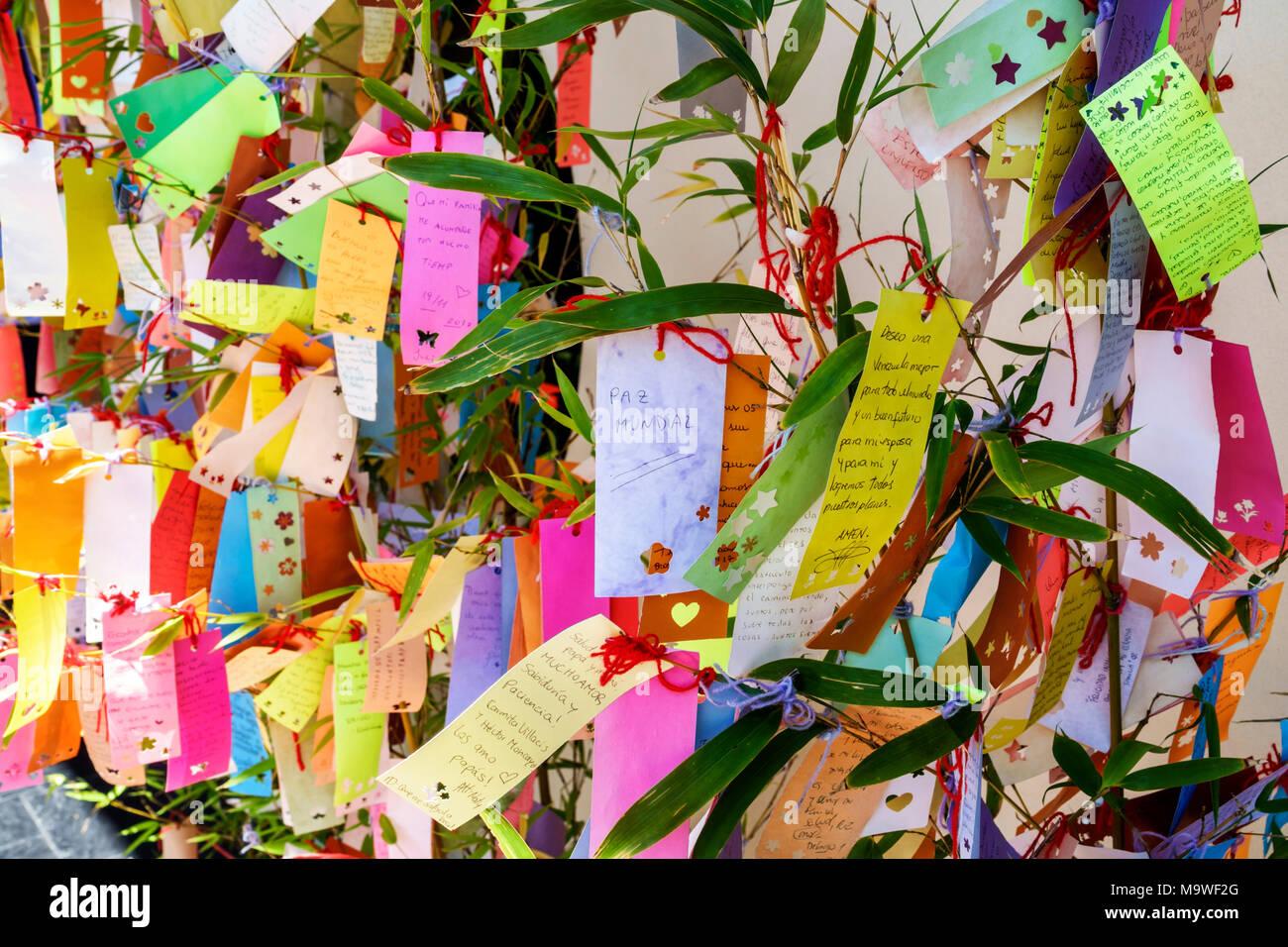 Argentina, Buenos Aires, Recoleta, Jardín Japonés Jardin Japones, Botánico, árbol de deseos, Tanzaku colgado de bambú, papel colorido, visita turística Foto de stock