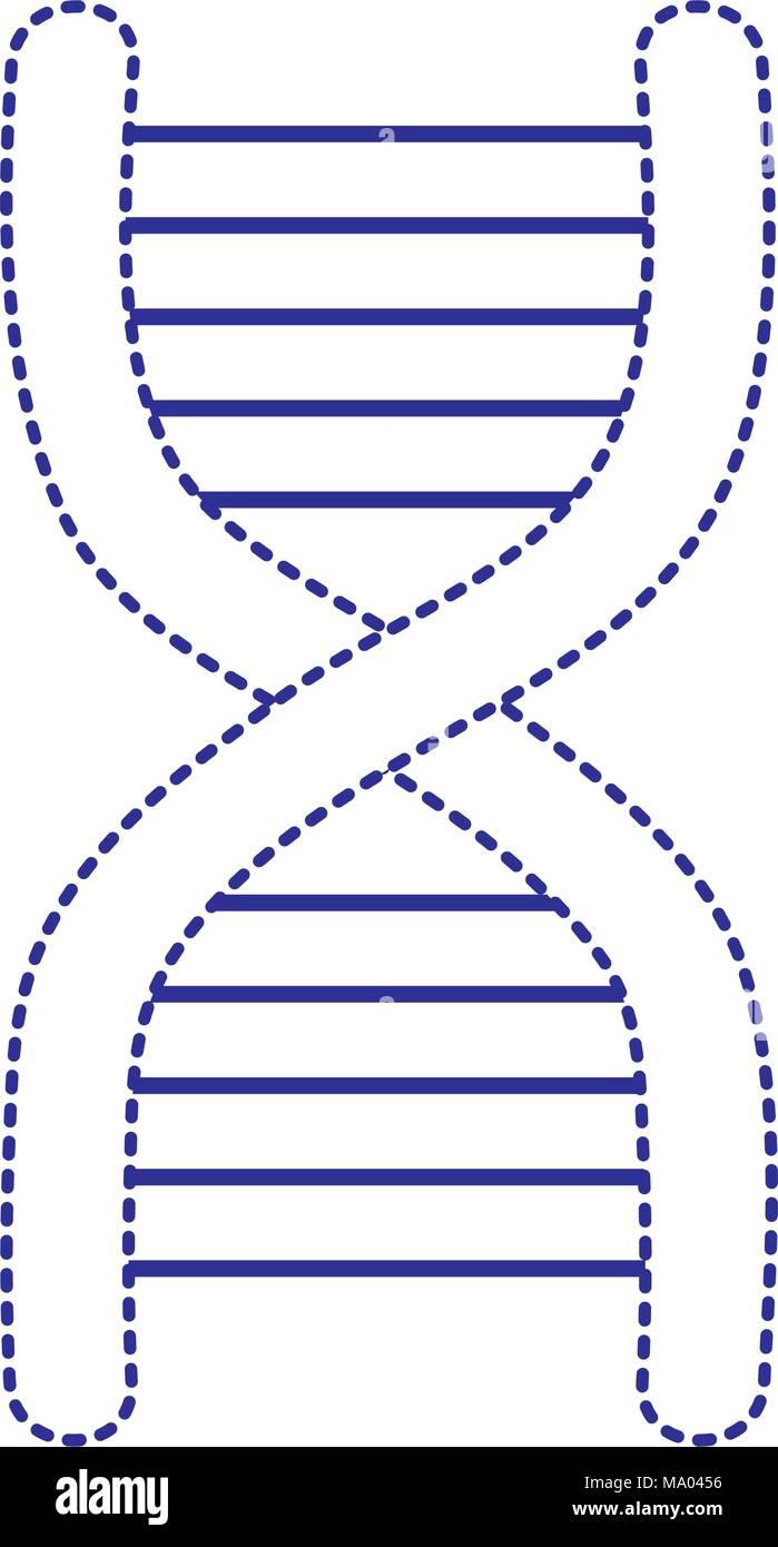 Forma Punteada La Ciencia Médica Estructura Molécula De Adn