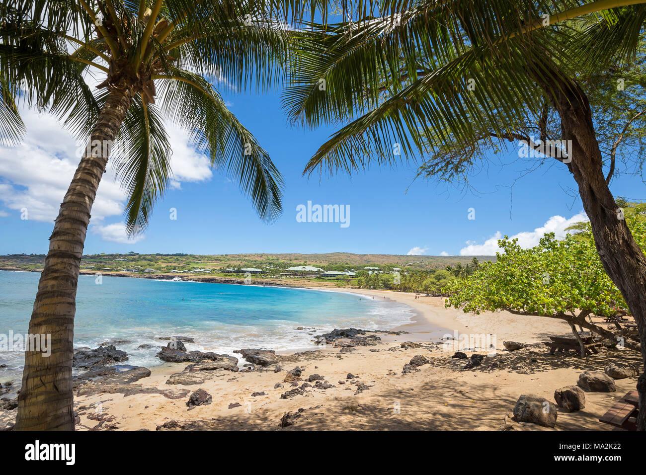 Four Seasons Resort con vistas a la playa de arena dorada y palmeras en Hulopo'e Beach Park, la isla de Lanai, Hawaii, USA. Foto de stock