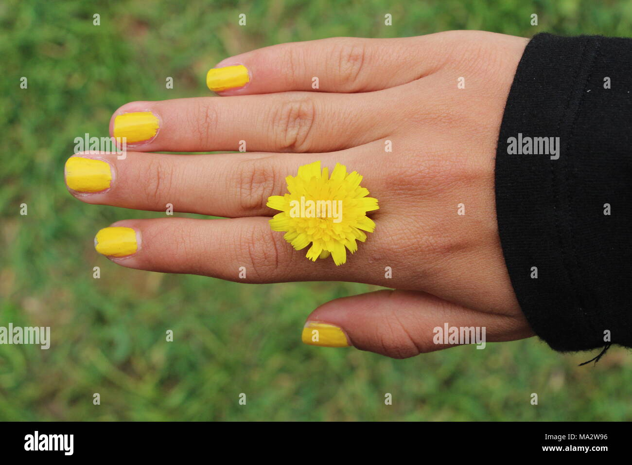 Lujoso Pálido Esmalte De Uñas De Color Amarillo Fotos - Ideas de ...