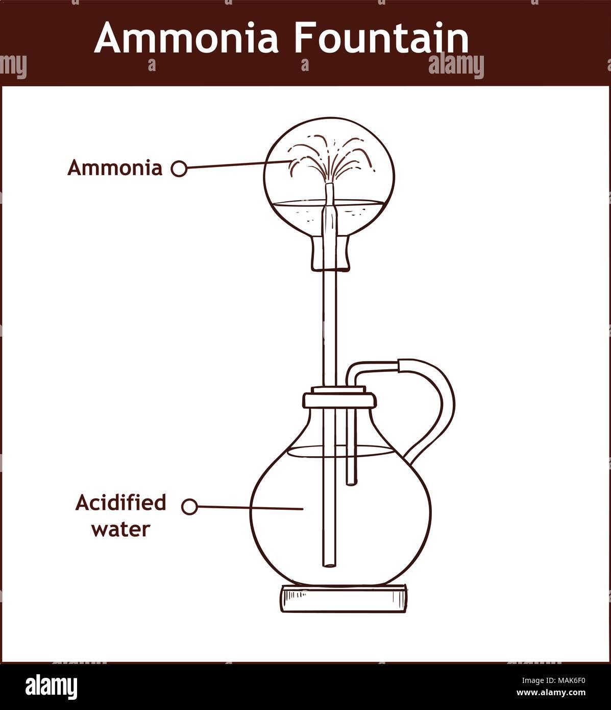 Lujo Anatomía Y Fisiología Diagramas Para Etiquetar Ornamento ...