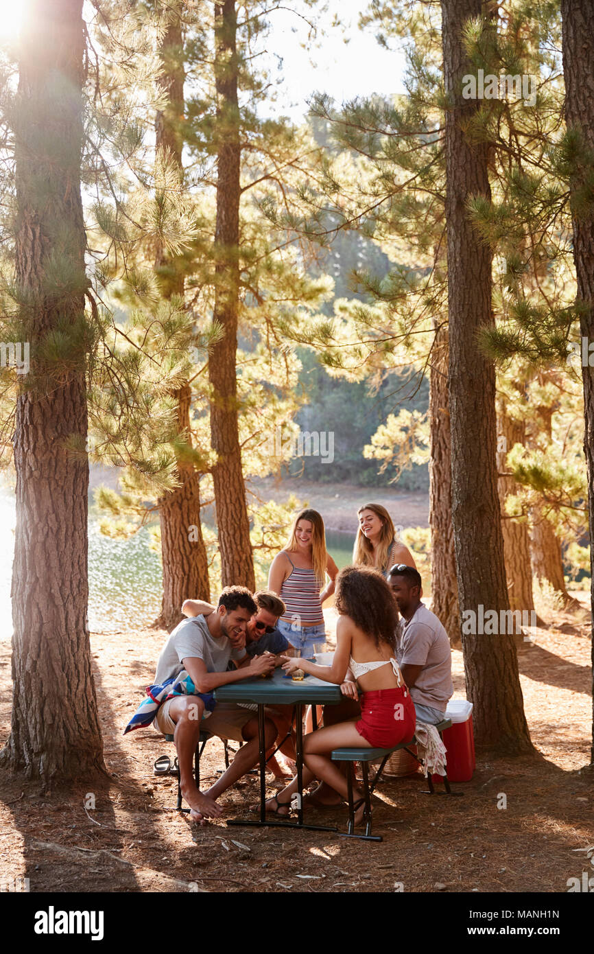 Grupo de amigos que cuelgan en una tabla por un lago, vertical Imagen De Stock