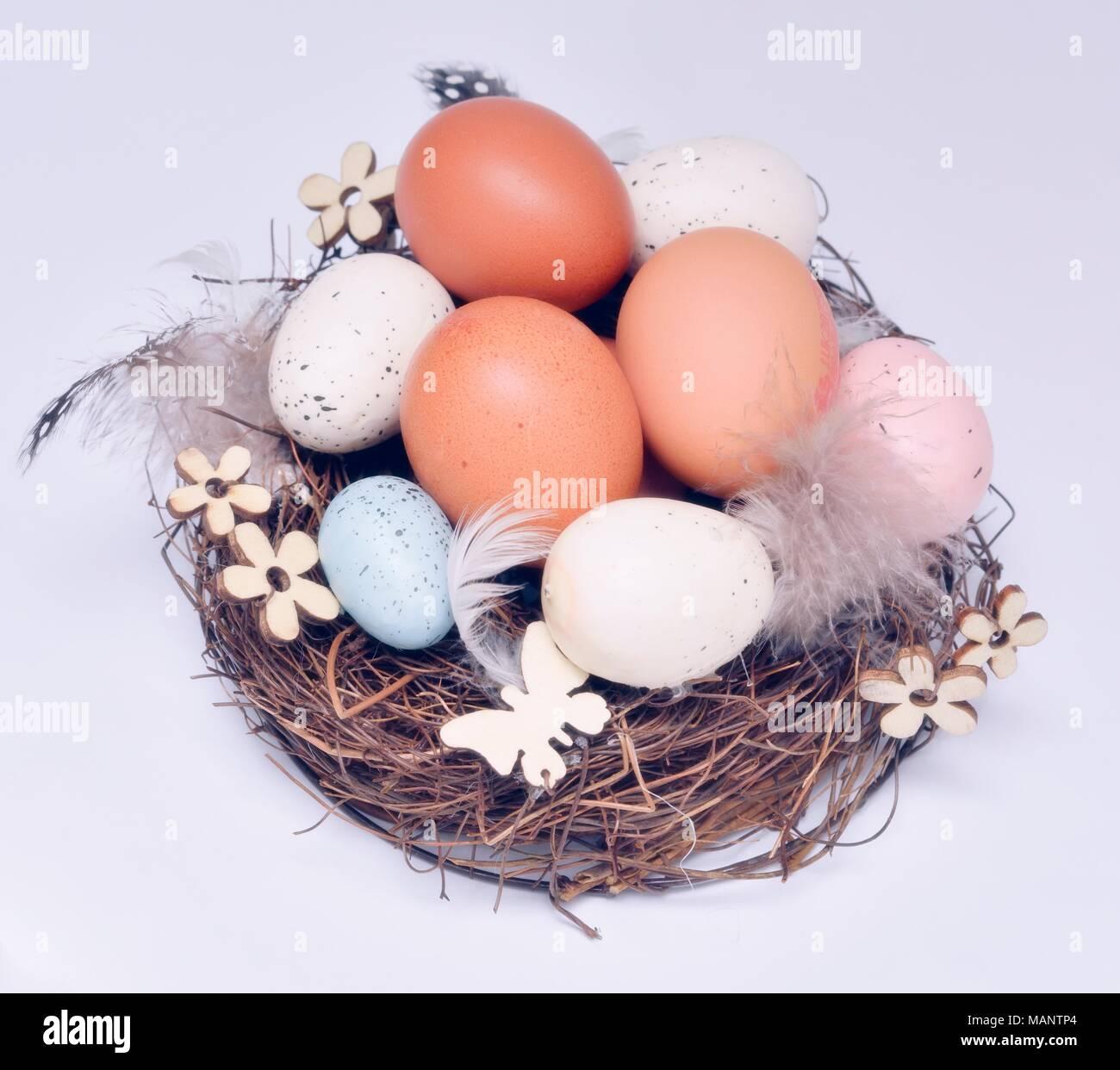 Concepto de nido de huevos Imagen De Stock