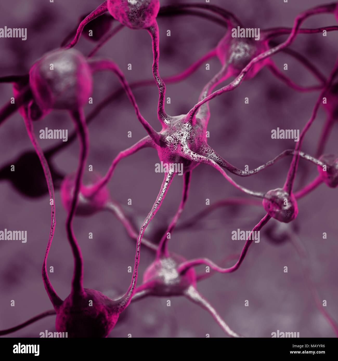 Ilustración 3D de una red neuronal biológica del cerebro humano, las neuronas interconectadas, las células del cerebro y las conexiones, equipo Imagen De Stock