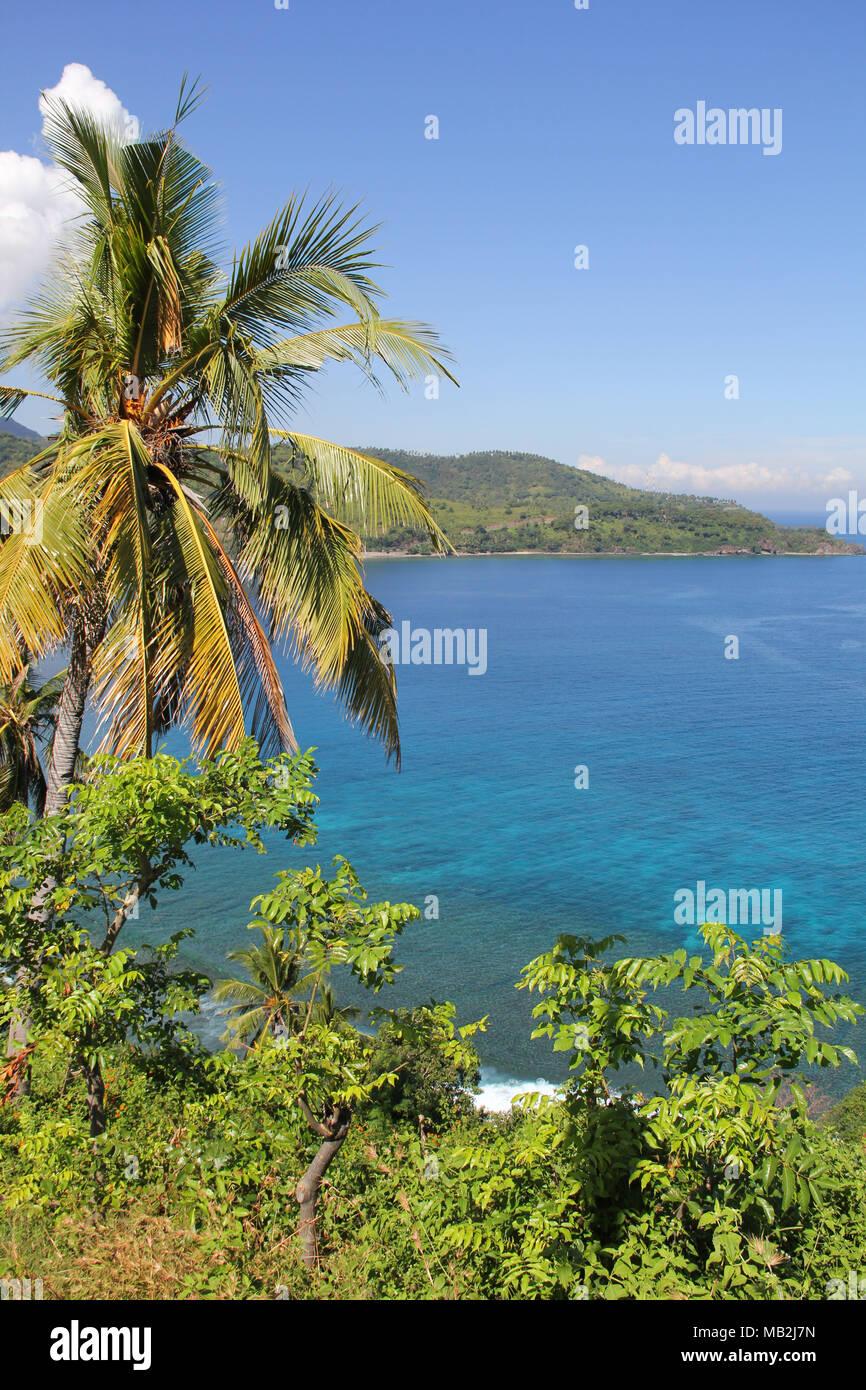 Vista de plantaciones tropicales a lo largo del estrecho de Lombok Indonesia Imagen De Stock
