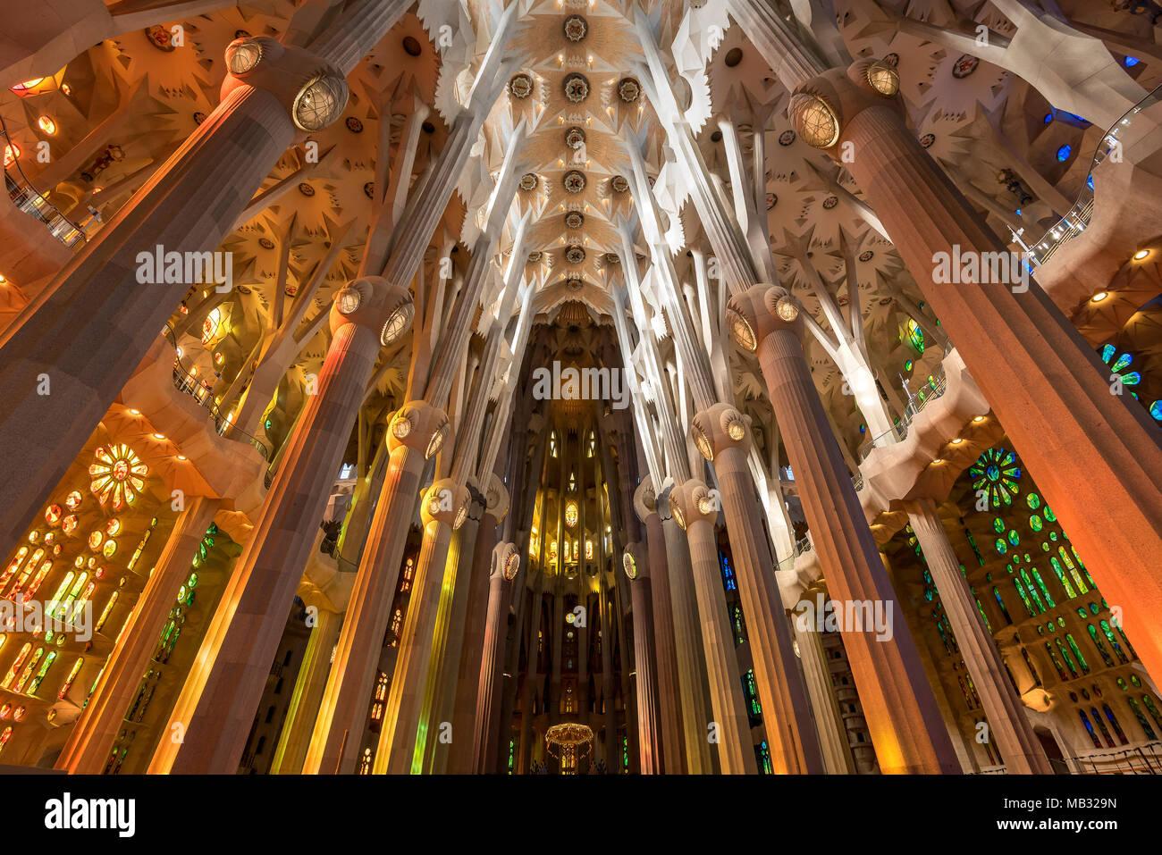 Vista de ángulo bajo el techo de la nave, Sagrada Familia, Barcelona, Cataluña, España Foto de stock