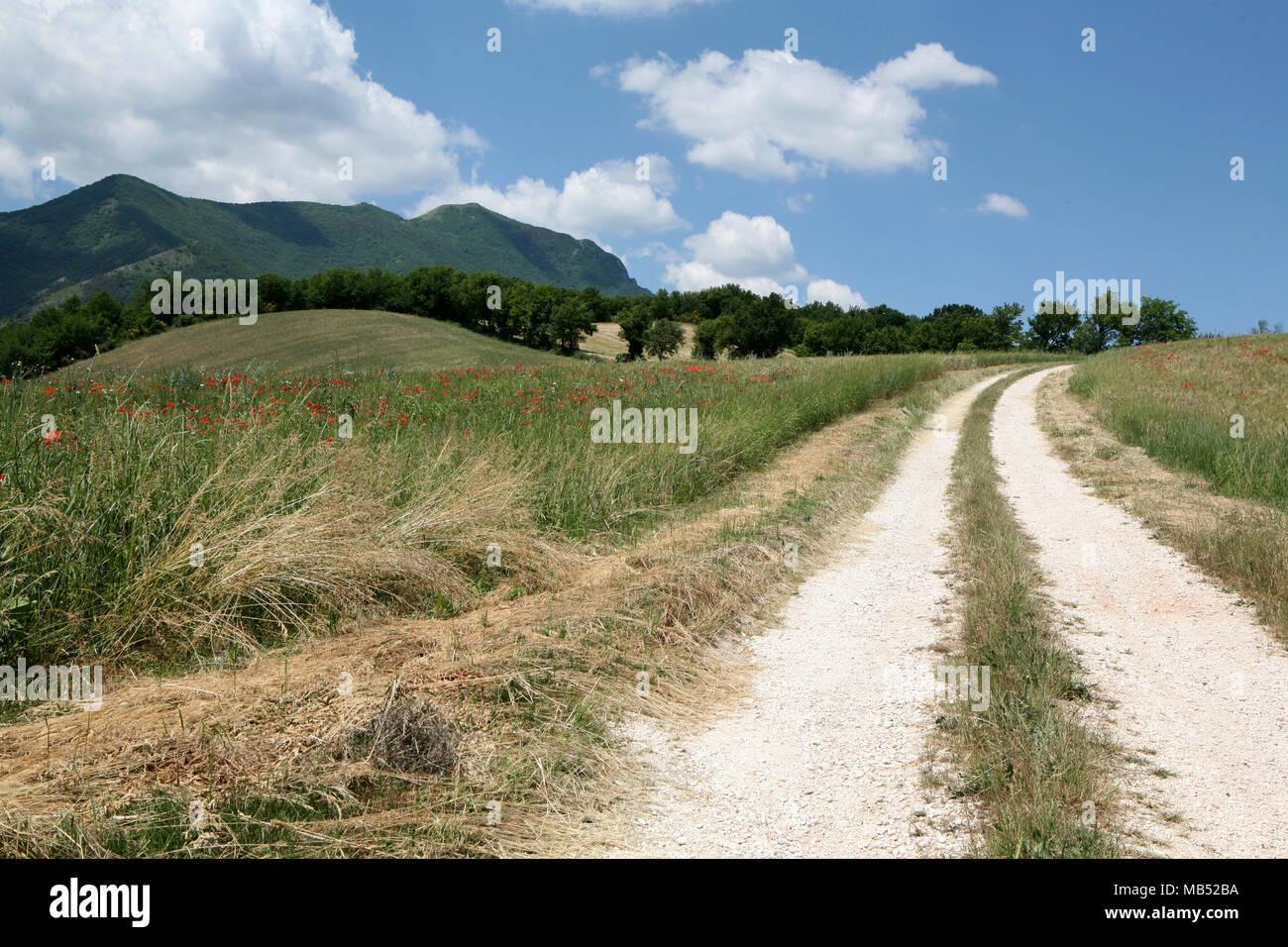 Sucio camino a las montañas Imagen De Stock