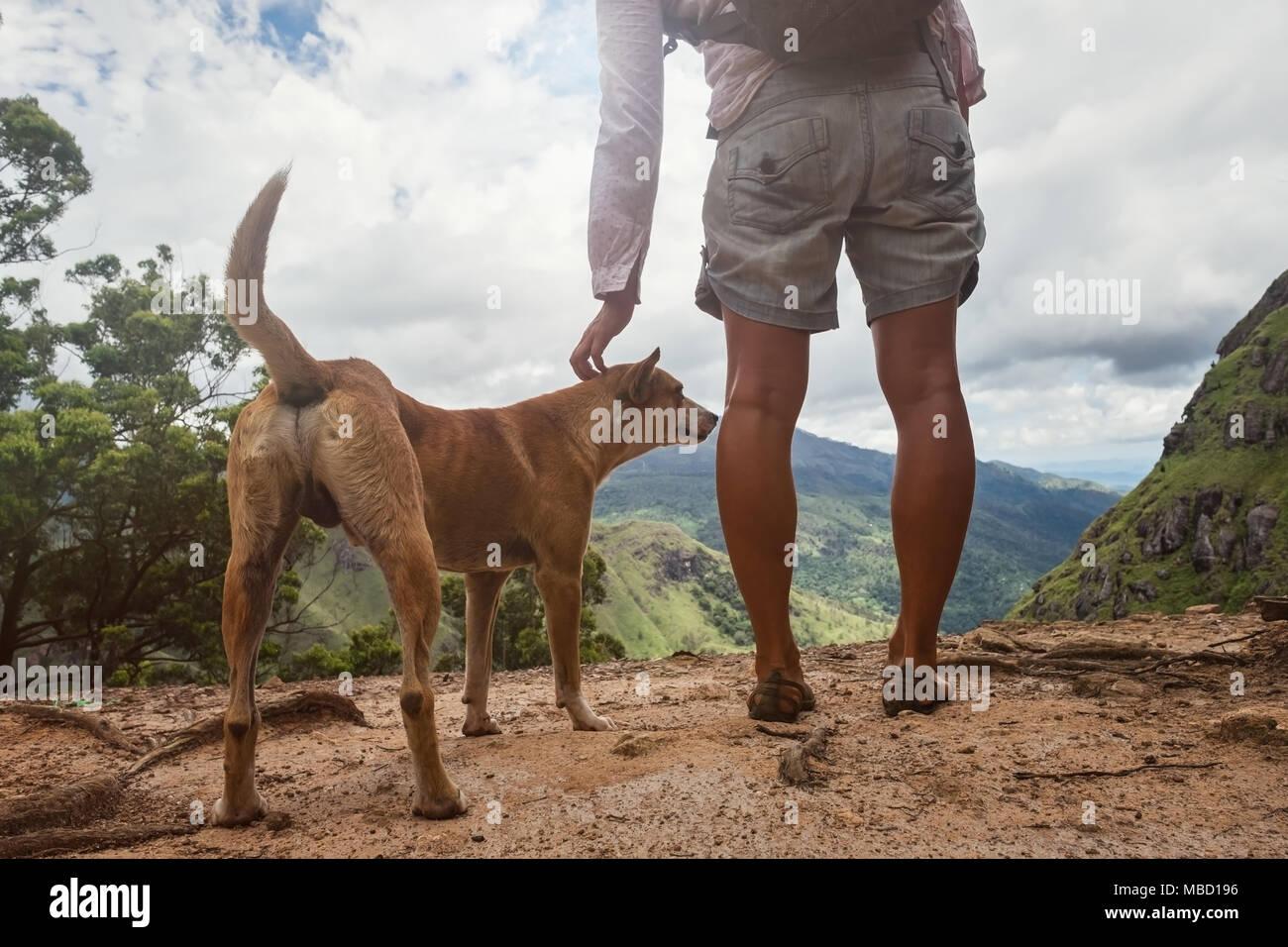 Mujer caucásica de pie con perro y mirando a la vista de la montaña. Foto de stock