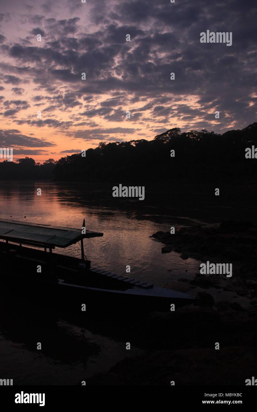Amanecer en la selva amazónica, la Reserva Nacional Tambopata, Puerto Maldonado, Perú Imagen De Stock