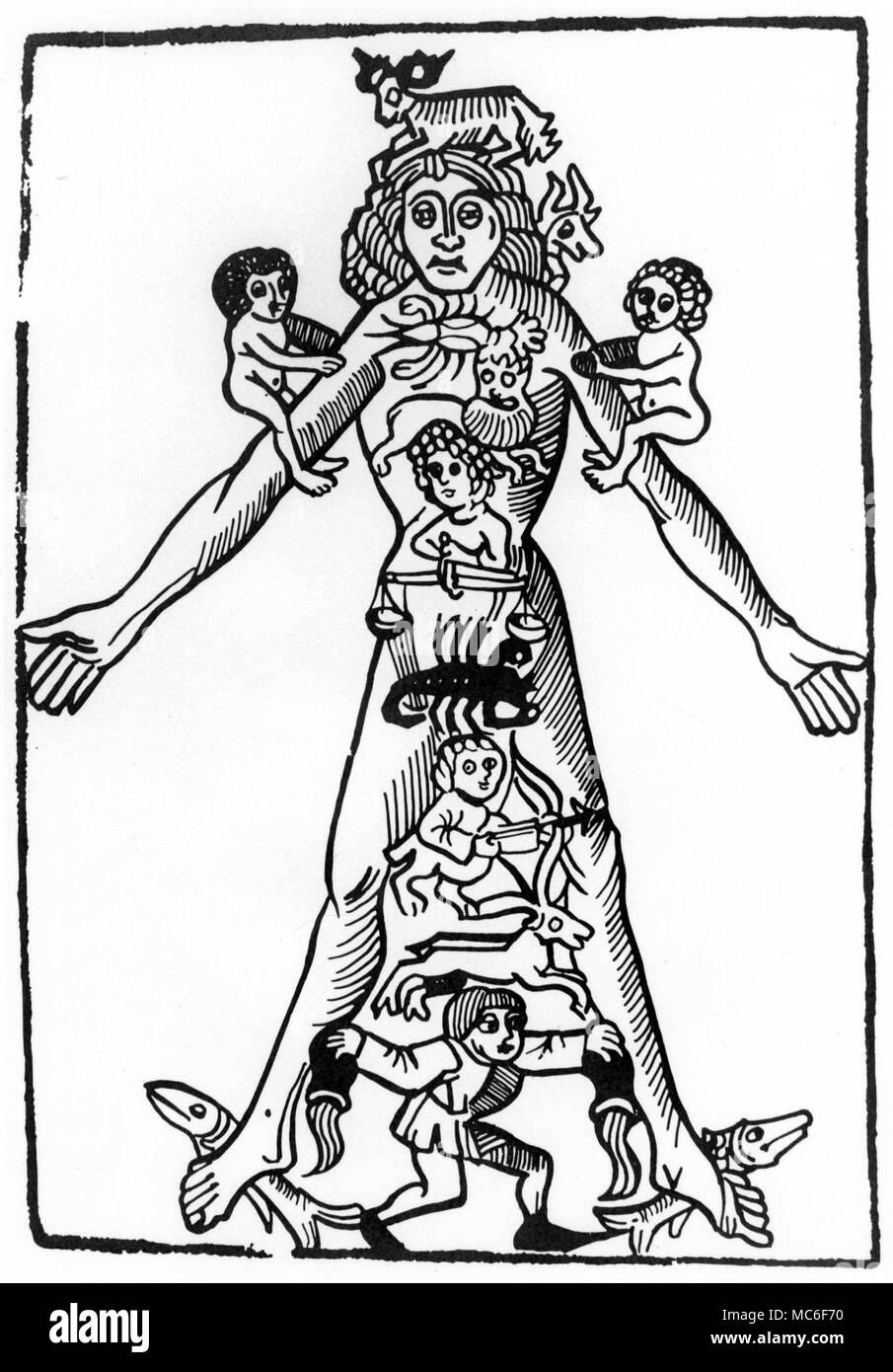 El hombre zodiacal, con cada uno de los doce signos repartida a ...
