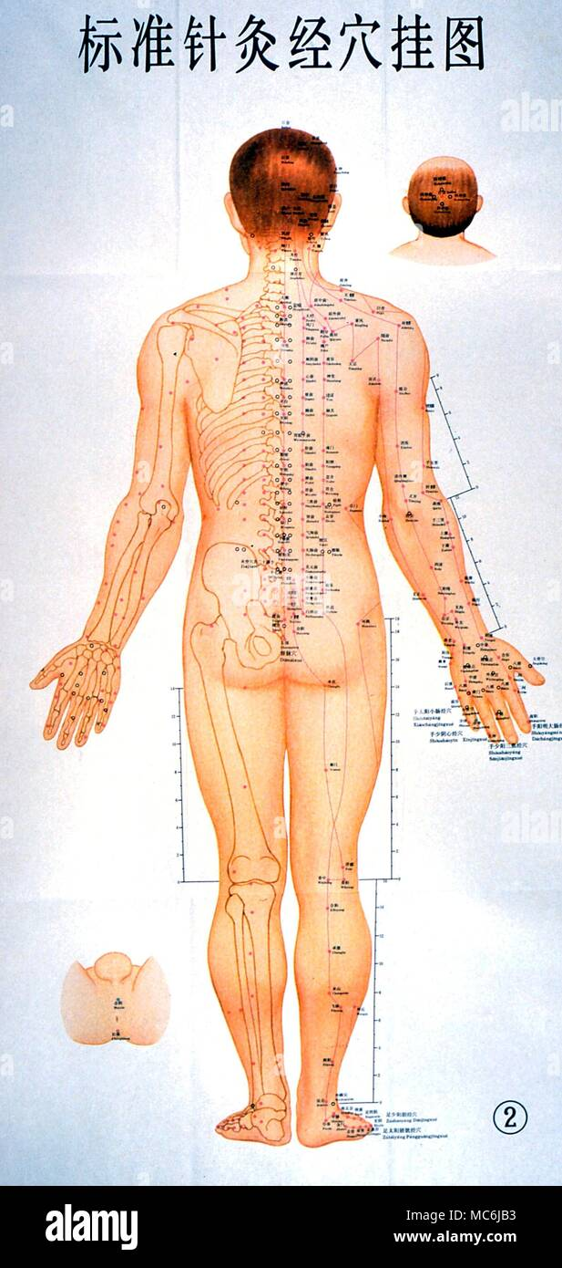 Acupuncture Chart Imágenes De Stock & Acupuncture Chart Fotos De ...