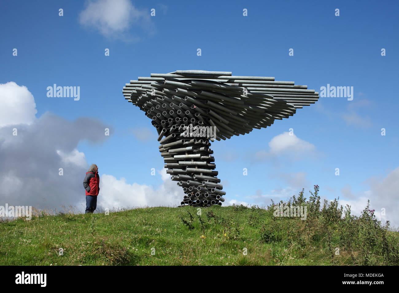 El canto árbol sonando en Crown Point, parte de los Alpes Pennines cerca Burnley, Lancashire. Imagen De Stock