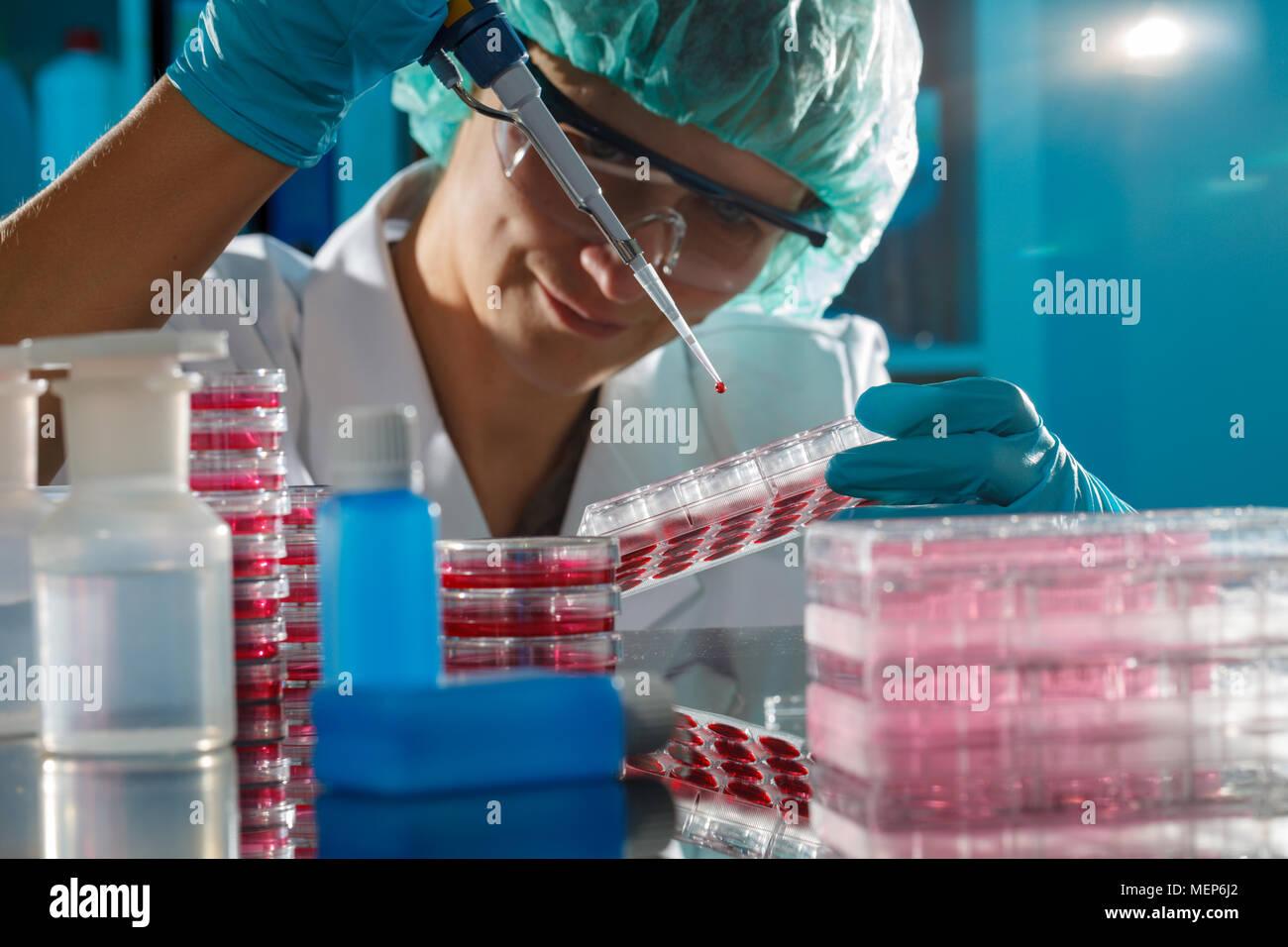 Técnico femenino en el laboratorio de genética - reprogenetics Foto de stock
