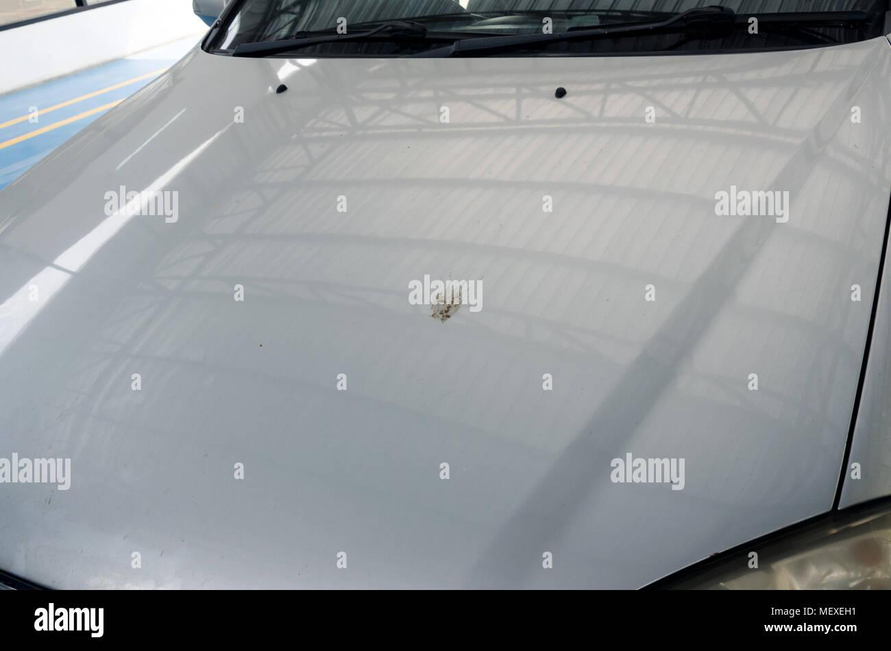 Suciedad en el capó delantero del coche. Imagen De Stock