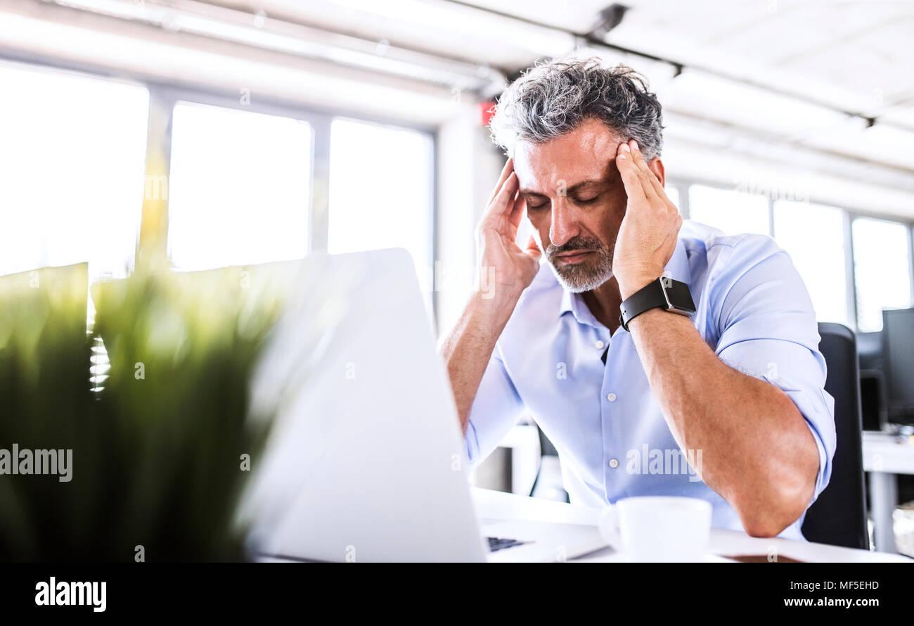 Destacado empresario maduro sentados frente al escritorio en la oficina con el portátil Imagen De Stock