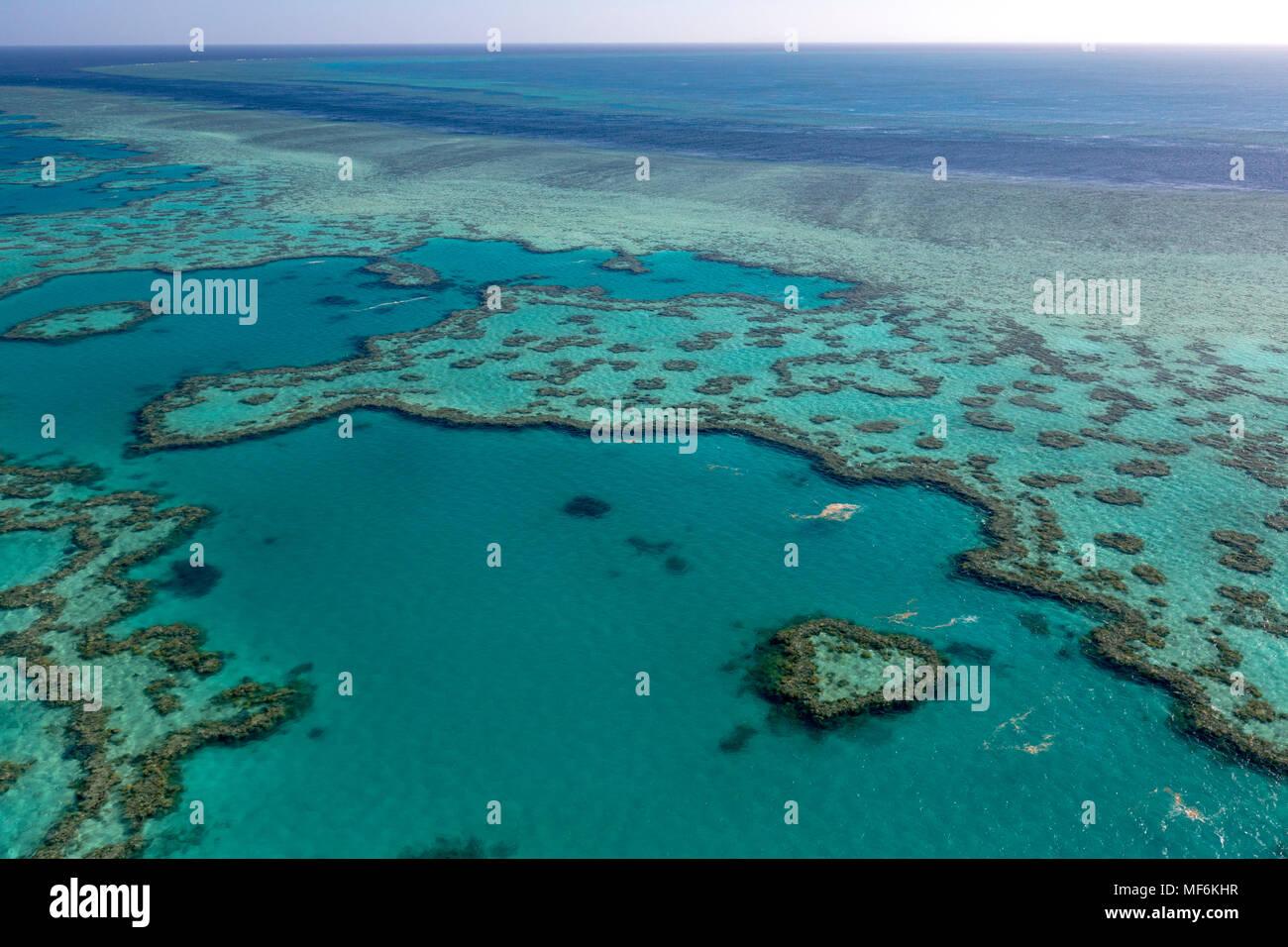 Arrecifes de Coral, en el corazón de Coral, parte de Hardy Reef, el borde exterior de la Gran Barrera de Coral, Queensland, Australia Imagen De Stock