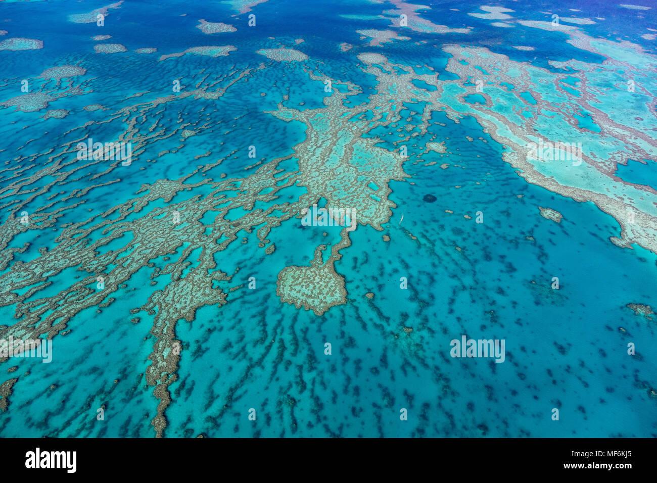 Estructuras en el Arrecife de Coral, el borde exterior de la Gran Barrera de Coral, Queensland, Australia Imagen De Stock
