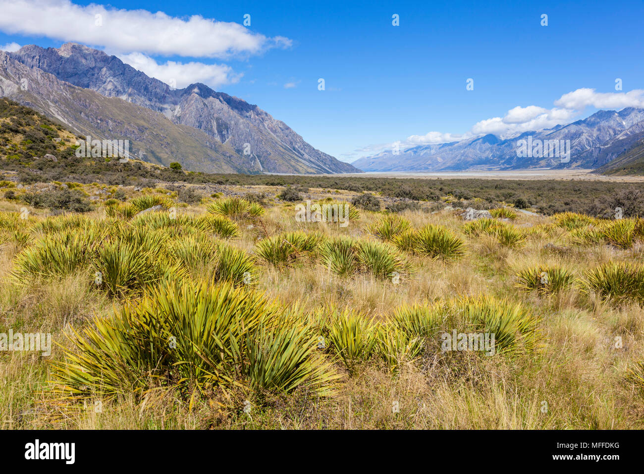 El parque nacional de Monte Cook vista desde el camino hacia el Glaciar de Tasmania, Isla del Sur, Nueva Zelanda Nueva Zelanda zealandnew, Isla del Sur, Nueva Zelanda Imagen De Stock