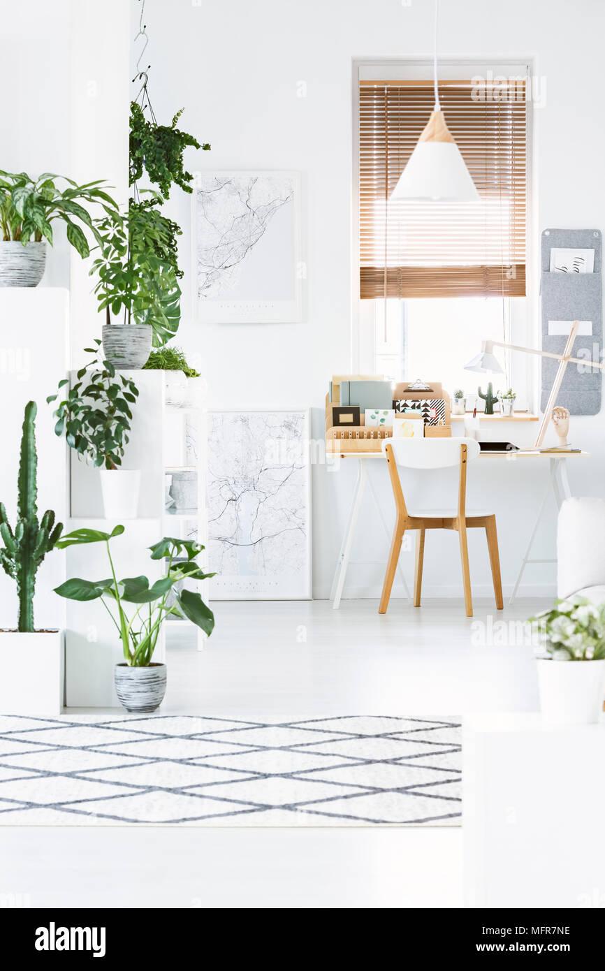 Casa La Con De Plantas En Vista Frontal Interior Oficina vn0OyNwm8