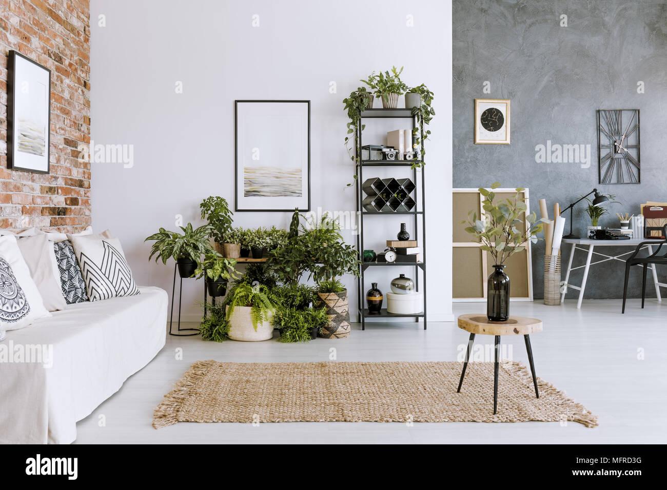 Plantas En El Salon Interior Con Alfombra Beige Blanco Sofa Y
